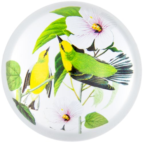 (Animal World - Blue-winged Warblers In Branches Glass Paperweight )