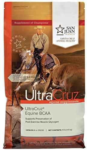 UltraCruz Horse BCAA Supplement, 10 lb, pellet, (55 day supply) by UltraCruz