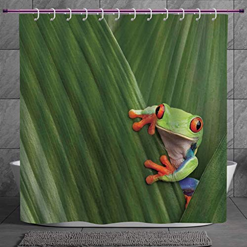 SCOCICI Cool Shower Curtain 2.0 [ Animal Decor,Red Eyed Tree Frog Hiding in Exotic Macro Leaf in Costa Rica Rainforest Tropical Nature Photo,Green ] Digital Print Polyester Fabric Bathroom Set - Bb Set Rainforest Animals