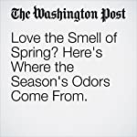 Love the Smell of Spring? Here's Where the Season's Odors Come From.   Ben Guarino