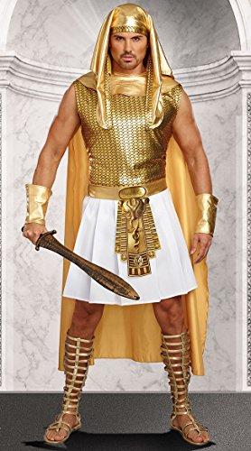 Egyptian Gods Costumes Halloween (Dreamgirl Men's Ramses, Gold/White,)