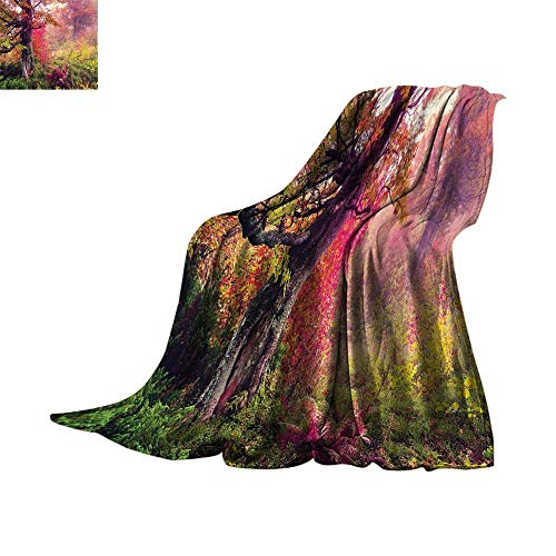 - Luckyee Throw Blanket Farm House Decor,Fairy Majestic Landscape with Autumn Trees in Forest Natural Garden in Ukraine,Multi Lightweight All-Season Blanket Bed or Couch 60