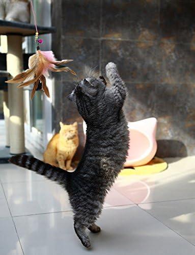 Sunbre Tige /Élastique 36 avec Cloche et Plumes naturelles pour Jouer avec Chaton Chat Animal