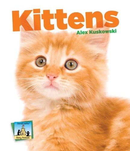 Download Kittens (Baby Animals) pdf epub