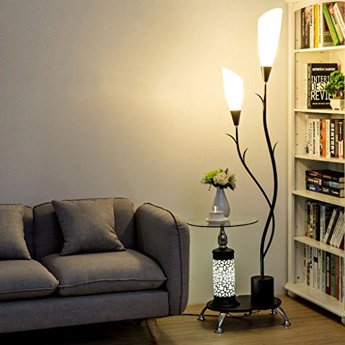 Acrylic Lamp Floor Shade (Modern Floor Lamp,with Glass Shelves, 2 Light White Acrylic Lampshade, Metal Decoration Stands Lamp for Living Room Bedroom,H171CM (Color : Black))