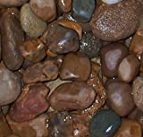 Safe & Non-Toxic {Various Sizes} 30 Pound Bag of Prewashed Gravel, Rocks, Stones & Pebbles Decor for Freshwater & Saltwater Aquarium w/ Earthy River Inspired Rustic Style [Brown & Tan]