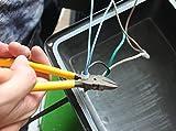 Rextin 1000pcs Transparent CE1 Protective Closed