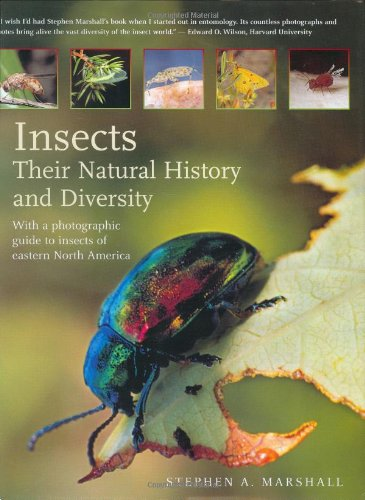 Insects: Their Natural History and Diversity: With for sale  Delivered anywhere in Canada