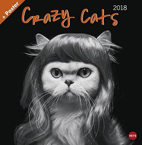 Crazy Cats Broschurkalender - Kalender 2018