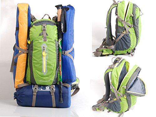 maleroads Marke Hohe Qualität 40L 7Farben Camping Wandern Rucksack Wasserdicht Nylon Reise Trekking Outdoor Rucksack Sport Daypacks Klettern Packsack mit Regenschutz Peacock Blue MNOew