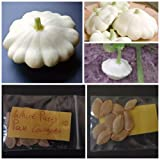 buy White Patty Pan Courgette ~10 Top Quality Seeds - Amazing Variety! now, new 2018-2017 bestseller, review and Photo, best price