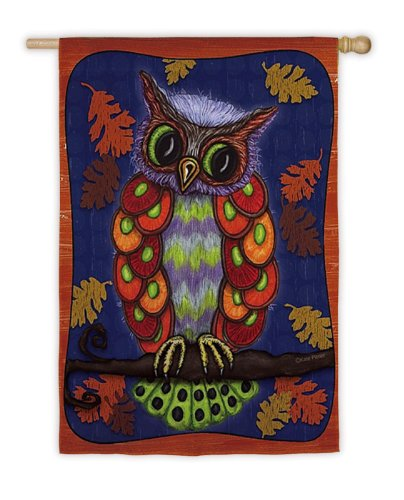 Regular Sized Silk Reflections Flag: Colorful Owl