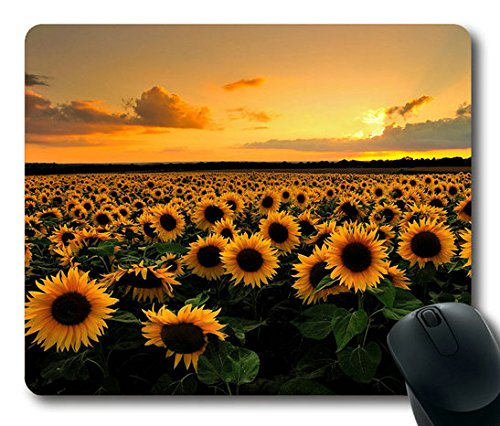 Best Mouse Pads Computer Pads. Reviews for Top Rated Mouse Pads Computer Pads - Magazine cover