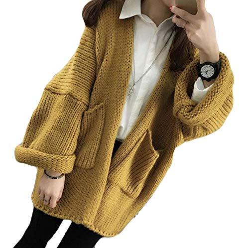 (ニカ) カーディガン ニットセーター レディース 長袖 無地 コーディガン ケーブル編み ゆったり 厚手 秋冬 カットソー 韓国ファッション