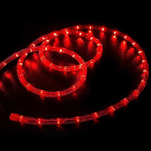 WYZworks 300' feet Red LED Rope Lights - Flexible 2 Wire Accent Holiday Christmas Party Decoration Lighting by WYZworks