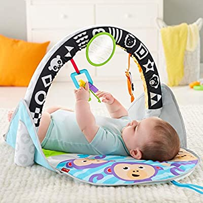 Fisher-Price 2-in-1 Flip & Fun Activity Gym : Baby
