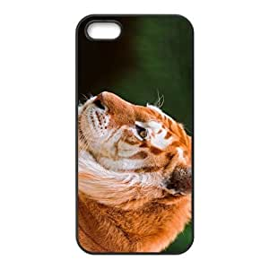 The Brown Tiger Hight Quality Plastic Case for Iphone 5s