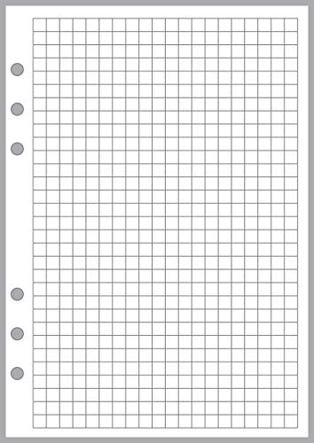 "A5 Size Graph Paper Refill, Sized and Punched 6-Ring A5 Notebooks by Filofax, LV (GM), Kikki K, TMI, and others. Sheet Size 5.83"" x 8.27"" (148mm x 210mm)"