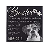 P Lab Personalized Granite Pet Memorial Stone w 'Your Pet Photo' Customized Tombstone - Loss of Pet Gift- Indoor Outdoor Dog or Cat For Garden Backyard 12'' x 12'' #13