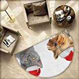 Christmas Semicircular Cushion Adorable Cat and Dog with Xmas Hats Domestic Pet Animals Holiday Celebration Entry Door Mat H 66.9'' xD 100.4'' Orange Grey Red