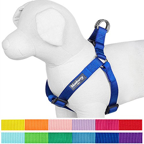"Blueberry Pet 12 Colors Step-in Classic Dog Harness, Chest Girth 15.5"" - 19.5"", Royal Blue, XS/S, Adjustable Harnesses for Dogs"