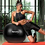 SpoxFit Exercise Ball Chair with Resistance