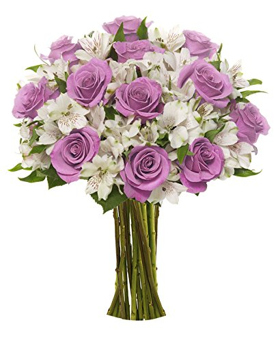 Benchmark Bouquets Delightful Roses and Alstroemeria, No Vase