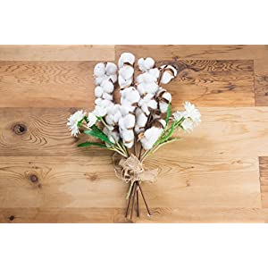 Cotton Stems - Artificial Cotton Flowers, Farmhouse Style Display Vase Filler, Rustic Decorations for Home, Office 2