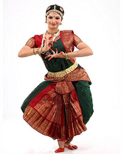 Bharatnatyam Dance Costume (Sf Costume Store)