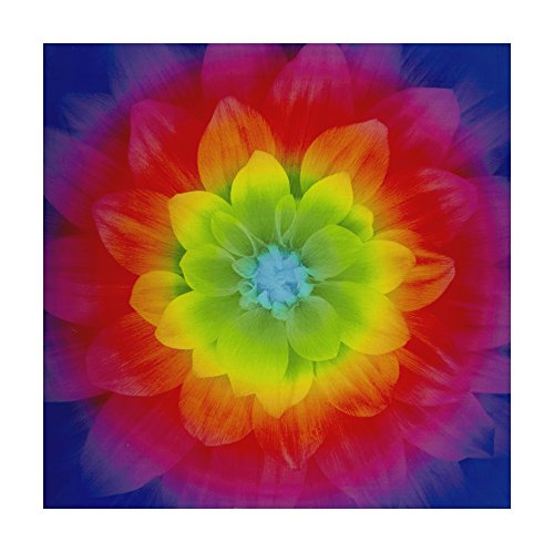 Hoffman Digital Dream Big Flower 43inPanel - Flowers Prism