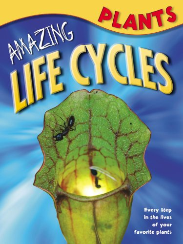 Download Plants (Amazing Life Cycles) PDF