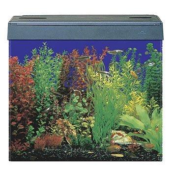Aquaria Part Motor Eclipse 3 Pet Supplies Fish & Aquariums