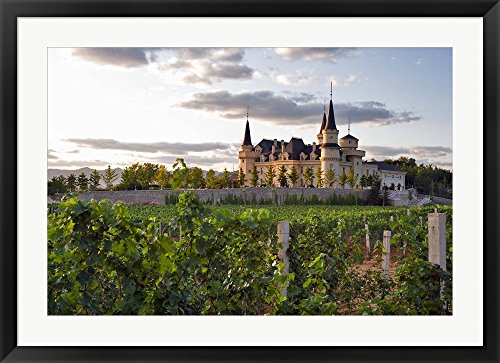 chateau-changyu-afip-global-winery-ju-gezhuang-town-china-by-janis-miglavs-danita-delimont-framed-ar