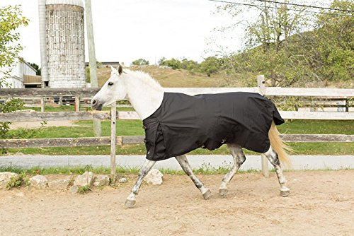 Horze Dakota 1200D Medium Weight Turnout Blanket 200G (Weight Turnout Medium)