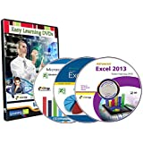 Master in MS Excel 2013 Video Training Tutorials on 3 DVDs