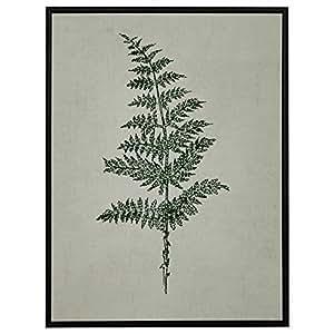 "Modern Print of Green Fern, Espresso-Color Frame, 31.75"" x 41.75"""