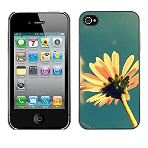 Design Hard ShellFlower Field Yellow Blue For Ipod Touch 5 Case Cover