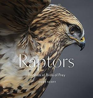 Book Cover: Raptors: Portraits of Birds of Prey