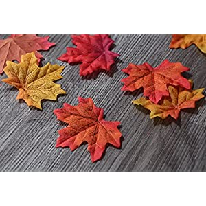 AmyHomie 300 Artificial Fall Maple Leaves in a Mixture of Autumn Colors - Great Autumn Table Scatters for Fall Weddings & Autumn Parties 4