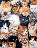 YISUMEI 60' x 80' Blanket Comfort Warmth Soft Plush Throw for Couch Cute Cats Breed Collage Pet