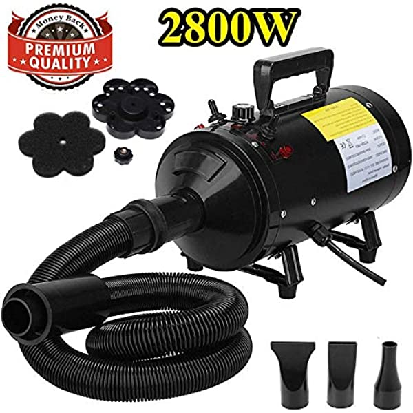 Dog Cat Pet Grooming Hair Blaster Hairdryer 2800W Motorcycle Power Dryer Portable Car Dryer,Bike Dryer Blower,Vesicle Dryer and Duster for Detailing with High Pressure Air Flow UK Standard