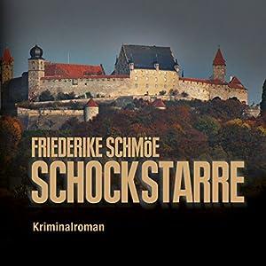 Schockstarre (Katinka Palfy 5) Hörbuch