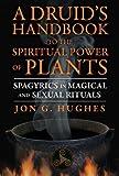 A Druid's Handbook to the Spiritual Power of