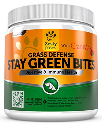 Grass Burn Spot Chewables Dogs product image