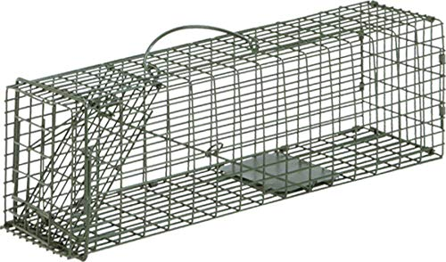 - Duke Single Door Cage Trap (16