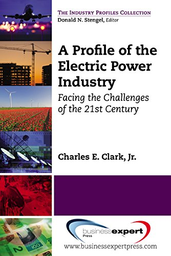 Download A Profile of the Electric Power Industry: Facing the Challenges of the 21st Century (The Industry Profiles Collection) ebook