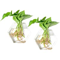 KYMAKE Pack of 6 Clear Round Wall Hanging Air Glass Planting Terrariums -Heat Resistant,Handmade,High Borosilicate-12cm Diameter-Best Beautiful Decorations in Our Life.