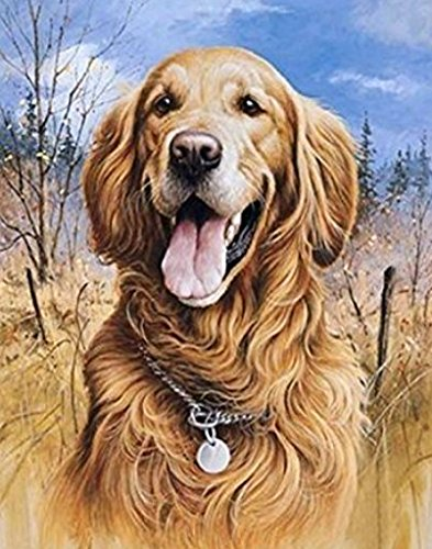 Crow's Soul 5D DIY diamond paintings diamond cross - embroidered diamond dog golden retriever necklace woods 30x40CM -