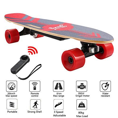 Nesaila 28inch Electric Skateboard