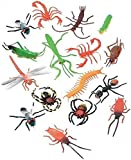 """Darice (16 pc – 2"""" Long Plastic Bugs and Arachnids – for Playtime, Party Décor, Cupcake Toppers, Sensory Bins – Use in…"""